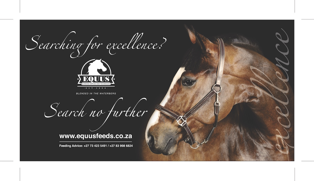EQUUS 175mm x 90mm Ad Banner